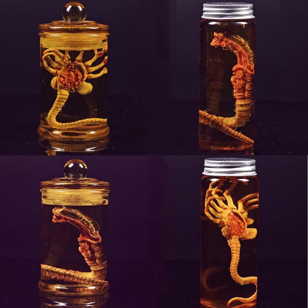 1/6 Scapredator depredador alienígena Alien Larva cara Bug cultura tanque Set Facehugger Chestburster Set para 12 pulgadas figura de acción juguete