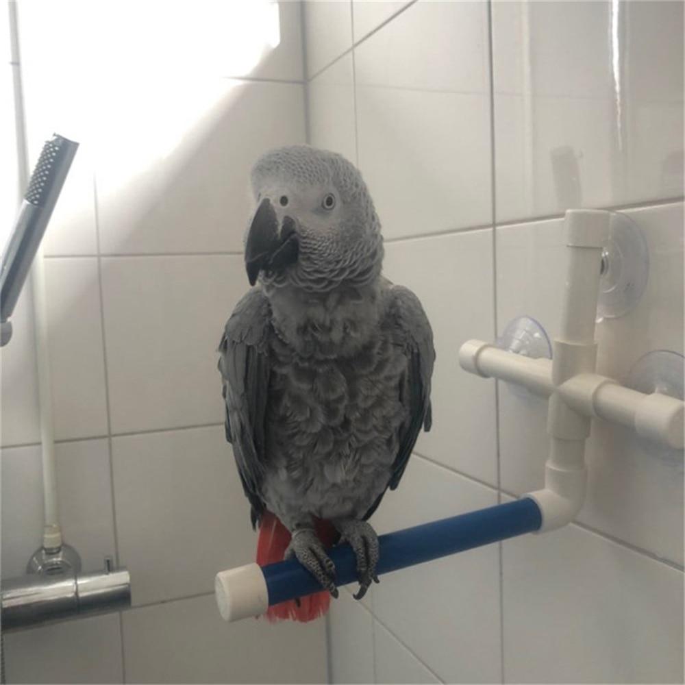 Домашние птицы складной Душ стоячие перчи игрушки птица ванна платформа стойка настенная присоска попугай сгусток шлифовальный Стенд Игрушка
