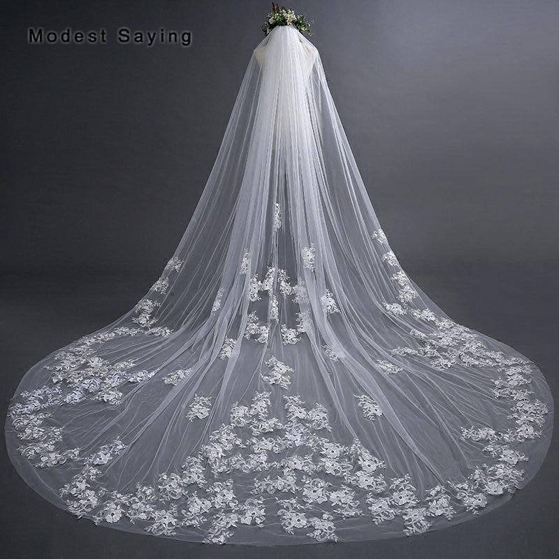 Elegant Ivory 3M Flowers Lace Long Wedding Veils 2018 with Comb Royal Cathedral Church Bridal Veil velos de novia largos encajes