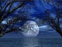 Peinture de diamant theme paysage de nuit et lune  broderie 5D  a bricolage soi-meme  point de croix  mazayka  decorations dinterieur