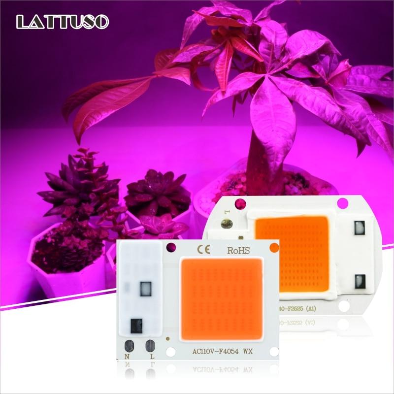 COB puce LED Phyto lampe spectre complet AC 220V 110V 10W 20W 30W 50W pour la culture de semis de plantes dintérieur et léclairage de croissance de fleurs