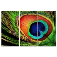 3 pieces framed wall art picture gift home decoration canvas print painting peacock feathers wholesale12y 76