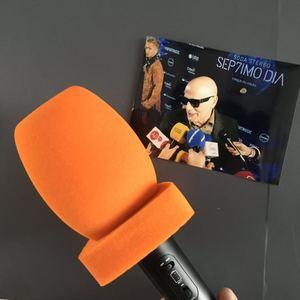 linhuipad 4CM diametre customization LOGO Red Interview Microphone foam Windscreen Handheld windshield Video Camera Condenser