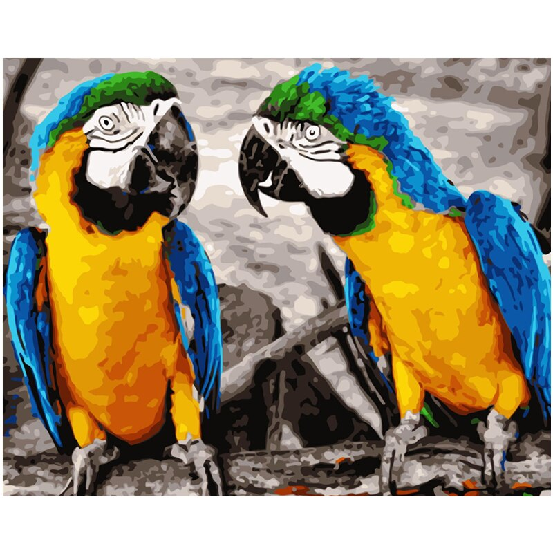 King Kong guacamayo Animal pintura Digital de DIY por números en la lona, pintura moderno cuadro sobre lienzo para pared regalo para niños decoración hogar 40x50cm