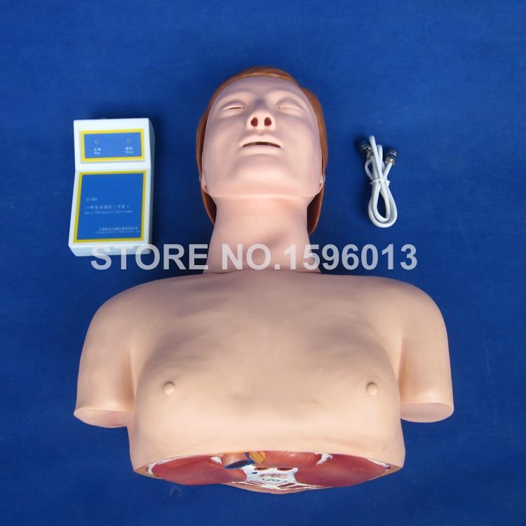 Maniquí de entrenamiento de CPR medio cuerpo económico, modelo de primeros auxilios CPR con controlador