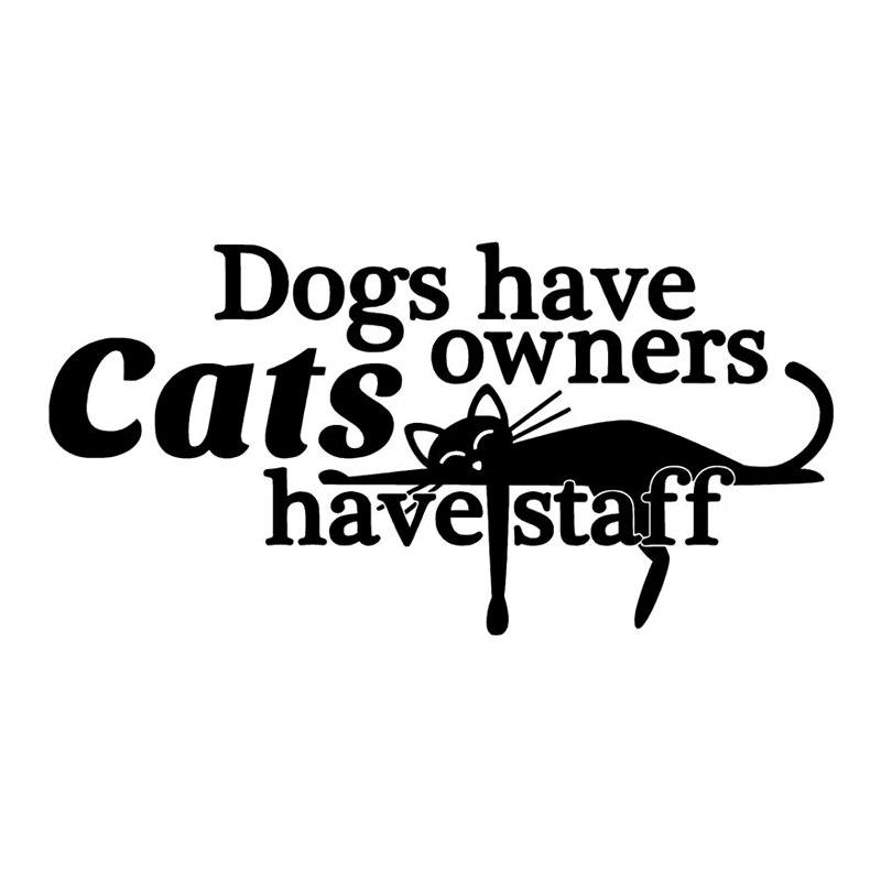 13,5 cm * 6,8 cm los perros tienen gatos propietarios... Pegatina de vinilo para coche S4-0853