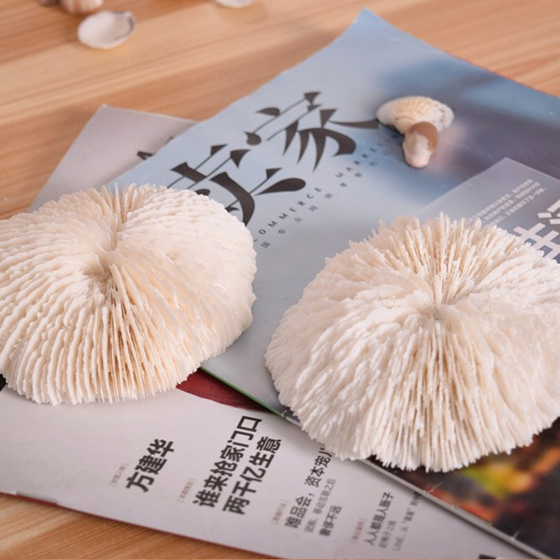 Бесплатная доставка (1 шт./лот) натуральный белый коралл, аквариумное озеленение, украшение для домашней мебели, маленькие грибные ломтики, у...
