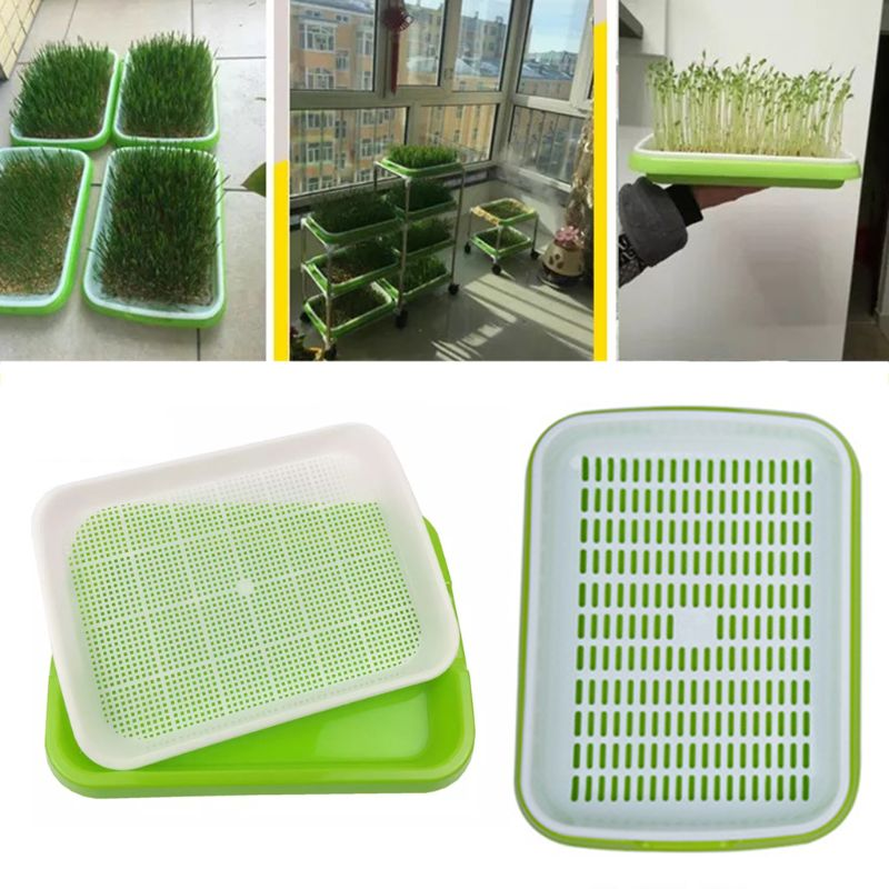 Seed Sprouter Tray Double-layer Soilless Culture Seeds Hydroponic Nursery Tray