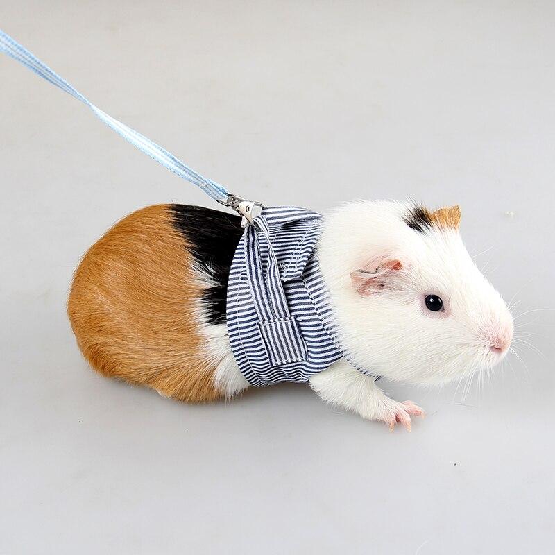 Chinchilla, conejillo de indias holandés, corsé de algodón transpirable, correa de pecho de dos piernas para mascota pequeña, correa de tracción para exteriores, ropa de correa
