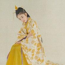 Yan Hua Yu jaune photographie Costume Performance Hanfu Tang dynastie scène Performance Hanfu photographie Costume