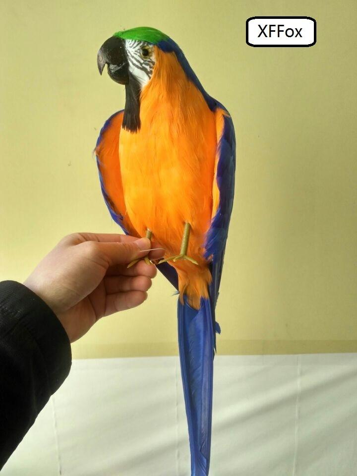 Grande vida real blue & orange espuma modelo & pena simulação pequenas asas papagaio papagaio pássaro presente sobre 45 cm xf0173