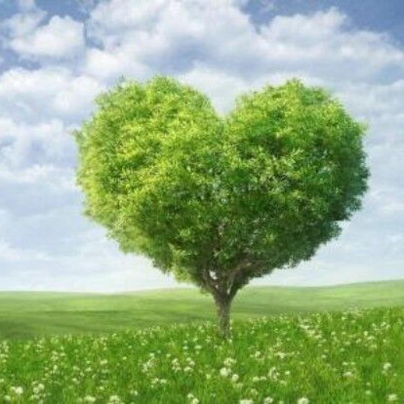 100% Полный 5D Diy Daimond картина зеленое сердце дерева, 3D Алмазная картина, круглые/квадратные стразы, алмазная живопись, вышивка
