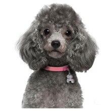 Cuadro de perro lindo mascota por número cuadrado completo diamante redondo bordado caniche diamante pintura punto de cruz MosaicZP-844 de diamantes de imitación