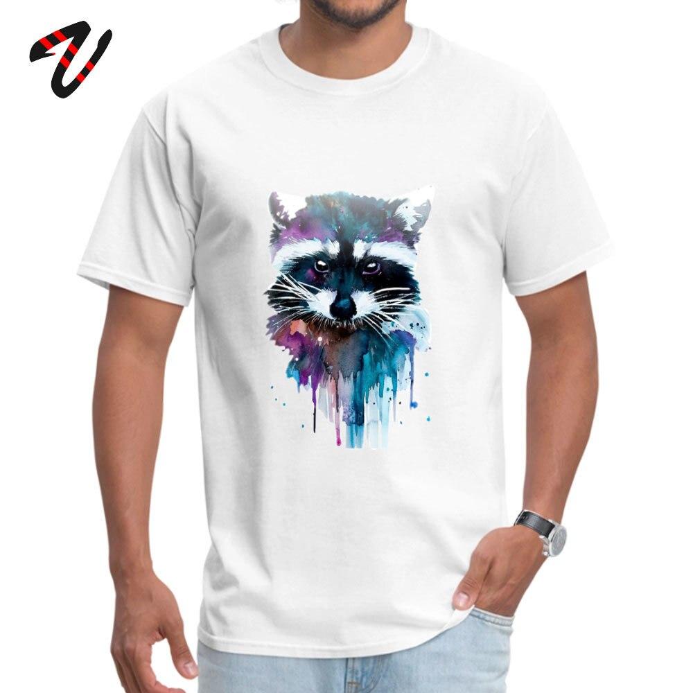 Camiseta Casual para hombre, Camiseta con estampado de acuarela de mapache, camisetas de animales para chicos, ropa de Hip Hop 100% algodón, camiseta personalizada con cuello redondo