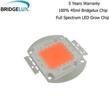 10 pièces 50 w 100 w hydroponie LED bridgelux perles LED COB croissance puce spectre complet 400nm ~ 840nm couverture plante toutes les étapes serre