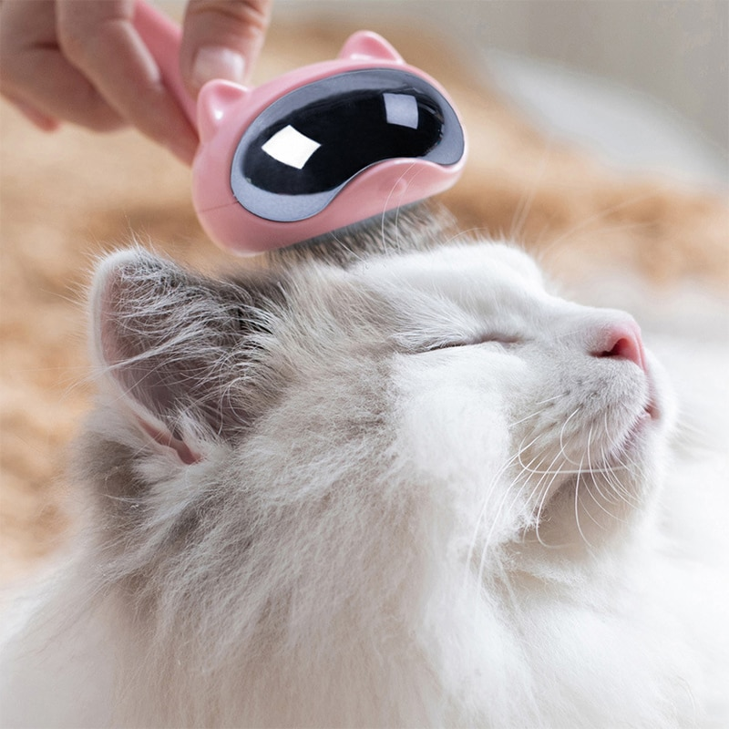 Berufs Cat Kamm Pinsel Pflege Werkzeug Für Katzen Edelstahl Verschütten Katzen Produkte Pet Haar Reinigung Liefert Zubehör