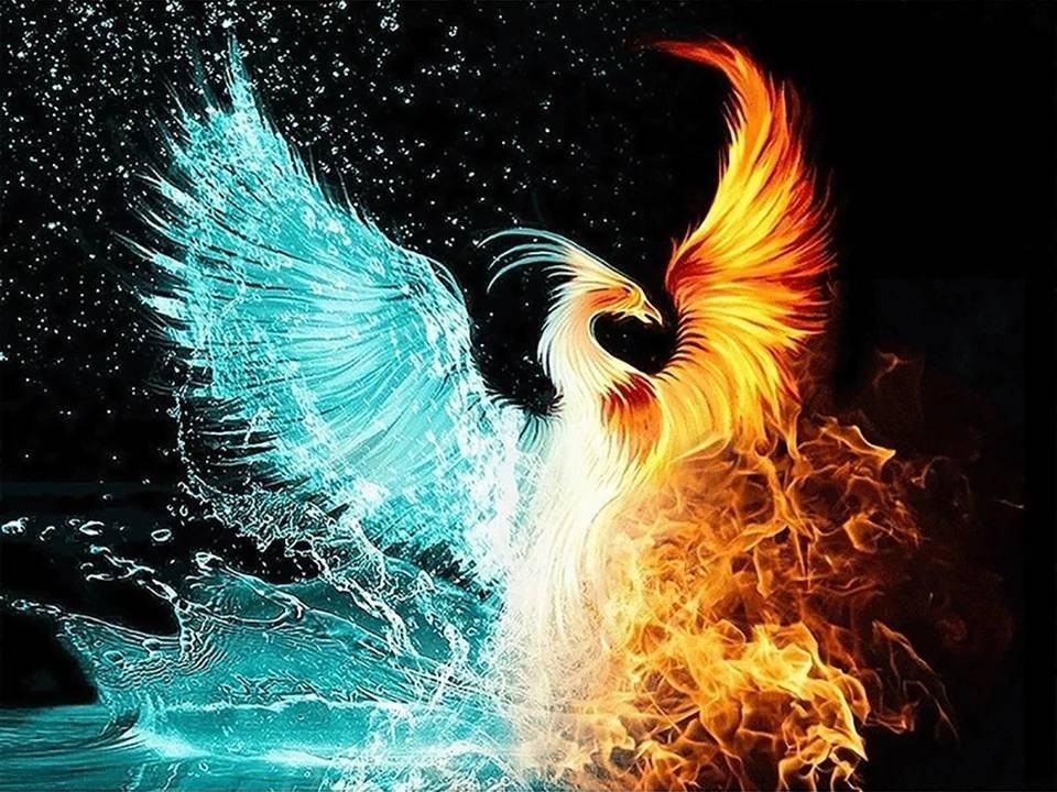 Pintura diamante água e fogo phoenix diy pintura diamante ponto cruz bordado casa decorativa chinês tradicional phoenix