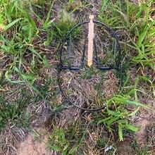 Bambusicola thoracica piège de chasse, puissant diamètre 200mm, pour la chasse, livraison gratuite à bas prix
