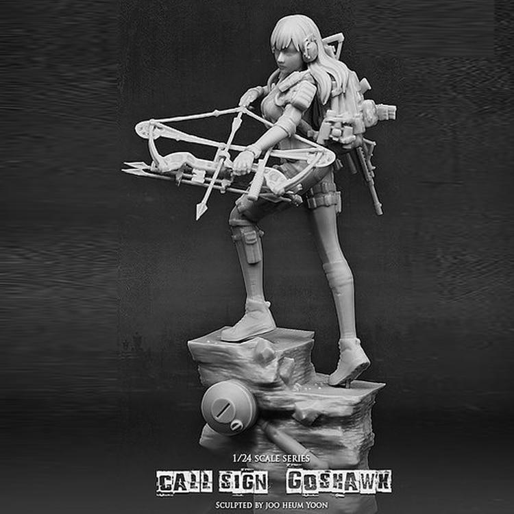 1:24 Resin Figure Modle Archer 75mm Call Sign Goshawk R95