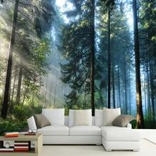 Niestandardowe 3D słońce las krajobraz natura fototapeta tapeta salon sypialnia ściana tła projekt Mural Papel De Parede