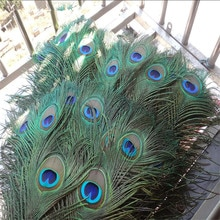 Plumes de paon 20 pièces/lot   Belle plume de paon naturelle, longueur 25 à 32 CM, accessoires décoratifs, belle qualité