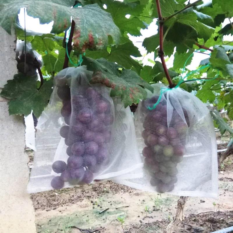 50PCS Fruit Vegetable Insert Protection Grow Bag Anti Bird Plant Protective Bag Drawstring Nylon Mesh Agricultural Pest Control