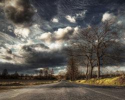 Nublado Estrada Árvore scenic backdrops fotografia fundos Computador impressão de Alta qualidade