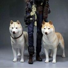 Mnotht nouvelle échelle 1/6 modèle Husky sibérien Simulation Animal chien modèle jouets pour 12in soldat jouet scène Collections loisirs