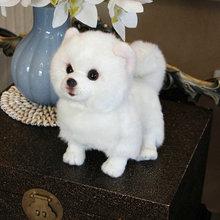 Peluche poméranienne chien poupée Simulation chien en peluche jouets super réaliste chien jouet pour les amoureux des animaux de compagnie de luxe décor à la maison blanc neige