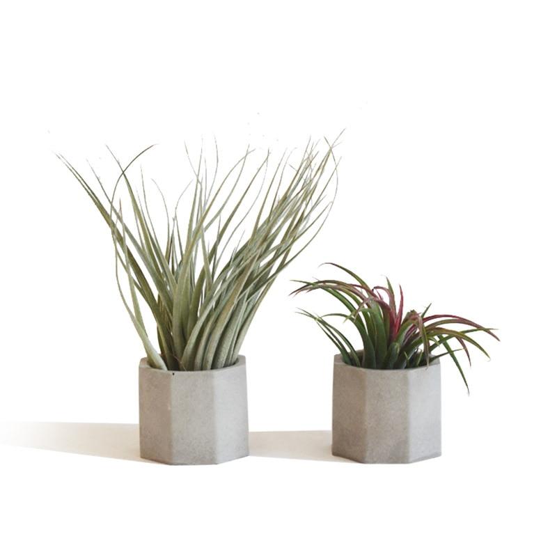 Mini Succulent plants pot molds concrete flowerpot moulds Silicone garden planter mold