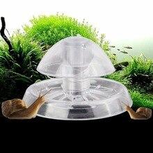 Новая чистая ловушка для улитки аквариума растения планарного цеха ловли окружающей среды C42
