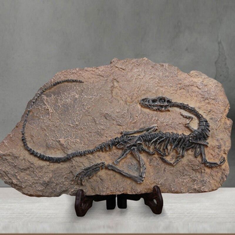 Смола моделирование динозавр бронтозавр fossil творческий ручной работы Домашний Декор Парк Юрского периода частный музей ремесла