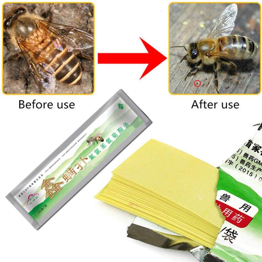 20 unids/pack abeja poco medicina de abeja poco acaricida de apicultura ácaro Varroa medicina asesino Control Herramientas de Apicultura