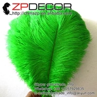 zpdecor party feather 100 pcslot 35 40cm14 16inchhand select fluffy dyed green wholesale ostrich plumes feathers