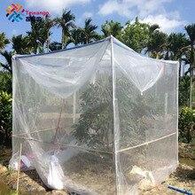 Tewango Fruit Tree Plant Cover Blueberry Gewassen Groente 40 MESH Nylon Insect Ongediertebestrijding Anti-Vogel Net Tuin Beschermen mesh