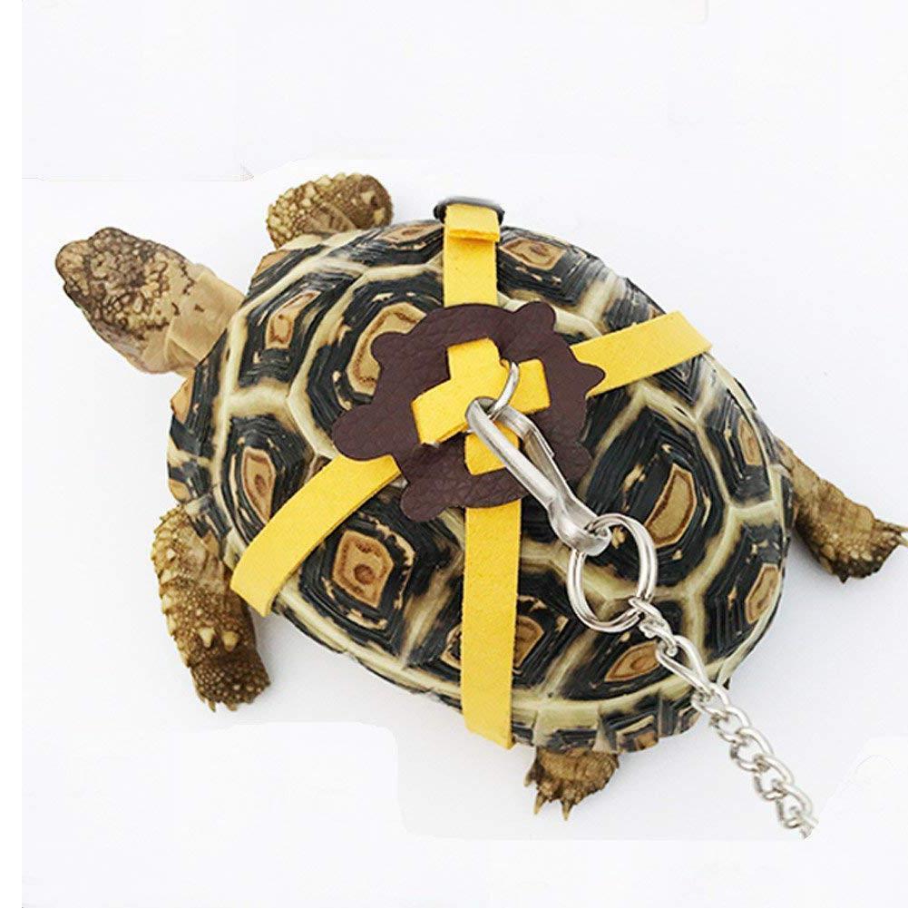 Corda de controle de cinto de tração, tartaruga de estimação, cinto de treinamento, passeio, suprimentos para animais de estimação