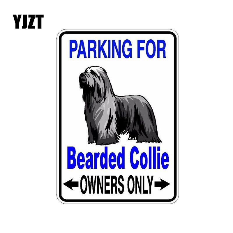 YJZT 10*14,2 см бородатый колли Собака ПВХ Автомобильный декоративный автомобильный стикер Наклейки C1-4535