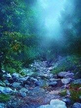 Photographie-fond 10x20ft forêt nuit paysage Photos Studios en bordure de route Photos en vinyle décors