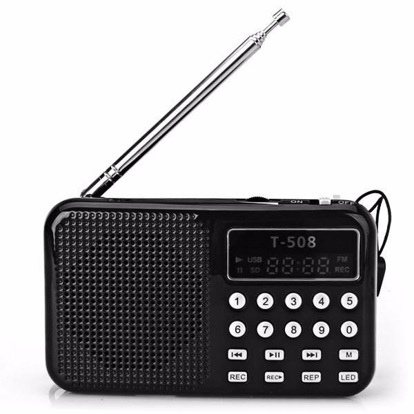 REDAMIGO Hot sale LCD Display Internet Radio Digital fm radio Micro SD/TF USB Disk mp3 radio with speaker RADT508
