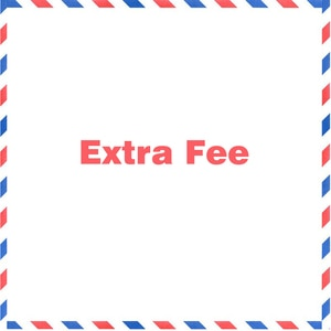 Special Link for VIP Customer/Extra Fee