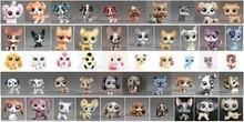 1 pièces animal Collection Figure chien chiot Corgi bouledogue animaux enfant lâche mignon jouets