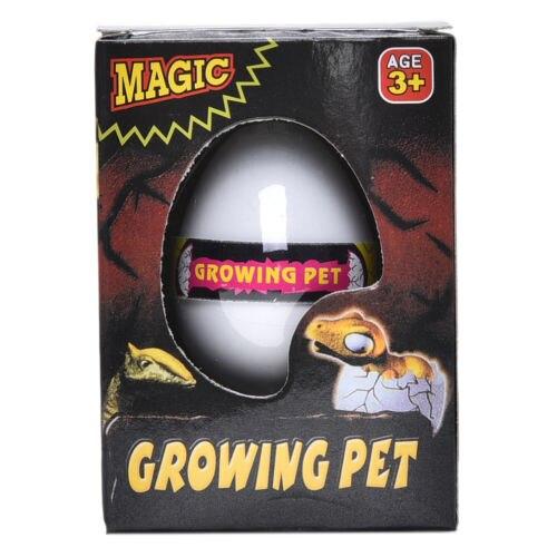 Divertido huevo de incubación de expansión de agua novedoso, juguete para niños y bebés, caja grande de huevos de dinosaurio para niños, juguetes para niños