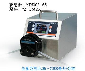 WT600F-65 YZ15 Testa Grande Ad Alto Flusso Industriale Laboratorio Intelligente Pompa Peristaltica Dosaggio Erogazione Pompe per liquidi (IP65) 0.06-1700 ml/min