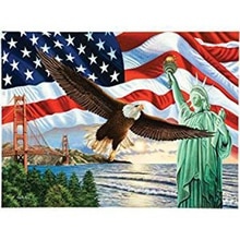 5D drapeau National daigle américain bricolage   Peinture Diamant, peinture Daimond 3D, carré complet, peintures broderie Diamant, cadeaux de décoration de maison
