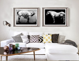 modern decorative art poster cartoon picture abstract canvas painting black and white giant prints home decor elegant horses
