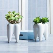 Creative Tooth Shape Flower Pot DIY Gardening Potted Succulent Fleshy Plant Pot  Cute Ceramic Art Pots Home Decor Office Decorat