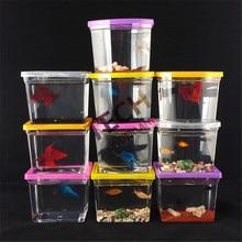 Réservoir de poisson Betta coloré   10*7.5*8.5CM, 10 pièces, maison rectangulaire de combat, Aquarium, poisson non inclus