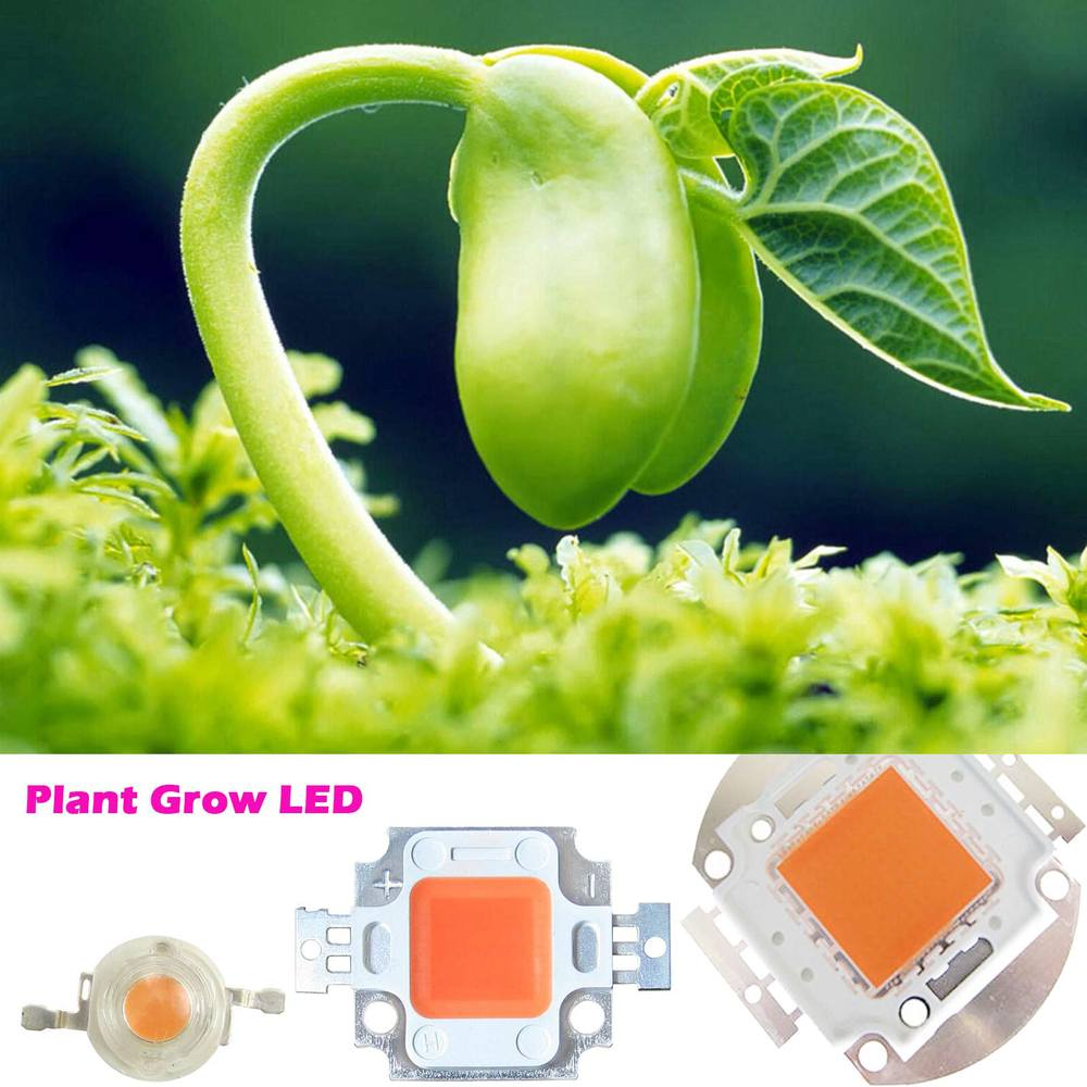 high power led chip 1w 3w 5w 10w 20w 30w 50w 100w smd cob light bead warm cold white red green blue rgb full spectrum grow light High Power 45mil 3W 10W 20W 30W 50W 100W Full Spectrum Led Chip 385~840nm BridgeLux For Plant Grow
