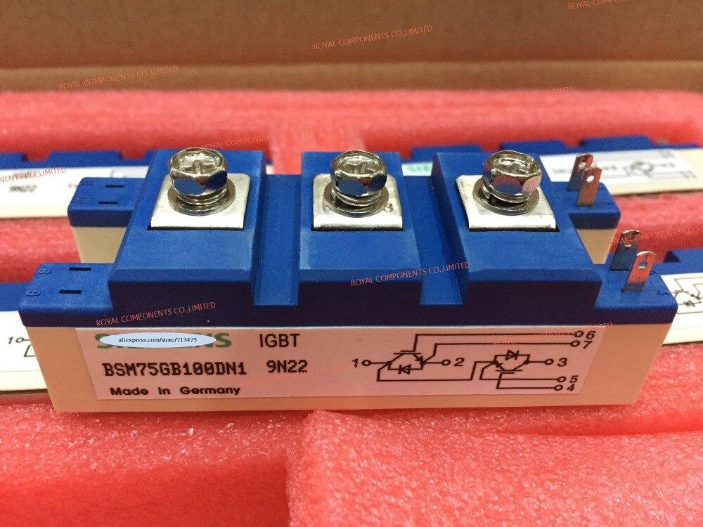 BSM75GB100DN1