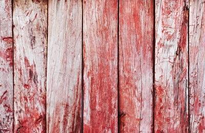 4x6 pies (1,25x2 m) Fondo de fotografía de Navidad recién nacido niños mascota Rosa fotografía Contexto general D-4819